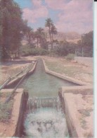 Jericho - Israel