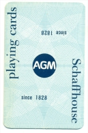 Kleine Zakkalender 1974 - AGM Cartes à Jouer - De Schaffhouse - Calendriers