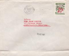 1952 URUGUAY COVER CEIBO TREE Stamps To GB - Uruguay