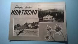 Saluti Dalla Montagna (Cervetto - Rifugio U.G.E.T.) - Italie