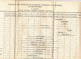 Tableau des principaux PASSAGES D OISEAUX en Moselle  Wilfrid DELAFOSSE rapace passereaux colombins gallinac�s grimpeurs