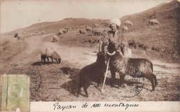 ¤¤  -  ROUMANIE   -  Carte Photo   -   Paysan Des Montagnes  -  Berger , Moutons  -  Oblitération  -  ¤¤ - Roumanie