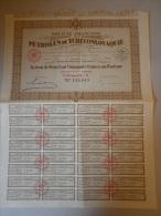 Actions Et Titres PETROLE DE Tchecoslovaquie émis Le 25 Janvier 1929 à Paris - Asie