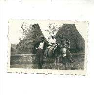 GIANO  VENUSTO   FOTO   CM. 4,5 X  6,5       CONTADINI CON CAVALLO   -- 1934 - Caserta