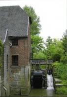 ETIKHOVE Bij Maarkedal (O.Vl.) - Molen/moulin/mill - De Ladeuzemolen Op De Maarkebeek, Ruim Tien Jaar Geleden - Maarkedal