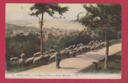 HOULGATE   //  La Route De Villers Et Vue Sur Houlgate - Houlgate