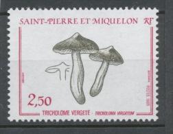 SPM  N°497 Flore Champignon Tricholome Vergeté 2f50 Lie-de-vin, Sépia ZC497 - St.Pierre & Miquelon