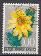 Yugoslavia Republic 1955 Flowers Mi#773 Used - Gebruikt