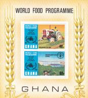 Ghana 1973 World Food Programme Souvenir Sheet MNH - Ghana (1957-...)