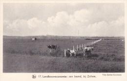 Scherpenheuvel - Een Beemd Bij Zichem - Scherpenheuvel-Zichem