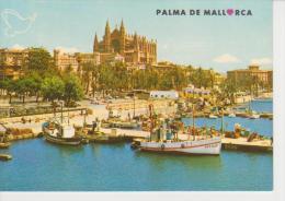(MALL1072) MALLORCA. PALMA. LA CATEDRAL DESDE EL MUELLE DE PESCADORES - Palma De Mallorca