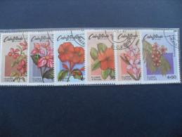 Capo Verde 1980 Flowers - Fiori - Isola Di Capo Verde