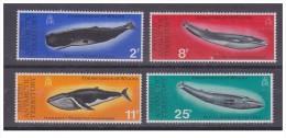 Territori Antartici Britannici - 1977 - Nuovo/new - Balene - Mi N. 64/67 - Nuovi