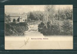 ROISEUX: Environs De Huy, Gelopen Postkaart 1902 (GA16898) - Huy