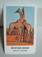 """Calendar card - Hungary - Animal - 1981 giraffe"