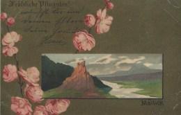 AK536 Alte AK Pfingstwünsche, Weltpostverein, Gelaufen 1905 - Ansichtskarten