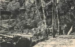 17840 New Hampshire, New Plymouth, Polar Caves, trees near walking bridge