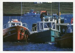 IRLAND -  AK 206479 Co. Kerry - Valentia Island - Kerry