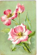 Jolies Fleurs Roses (tulipes?) - Carte Légèrement Gaufrée - Illustration - Très Belles Couleurs - 2 Scans - Fleurs, Plantes & Arbres