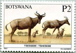 N° Michel 414 (N° Yvert 568) - Timbre Du Botswana (1987) - (MNH) - Tsessebe - Tshesebe (JS) - Botswana (1966-...)