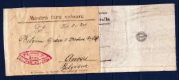 Romania - 1924 Braila To Belgium ANVERS-  Mostra Fara Valoare Cover - Covers & Documents