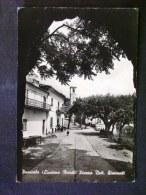 TOSCANA -MASSA CARRARA -LICCIANA NARDI -F.G. LOTTO N°390 - Carrara