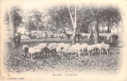Afrique ALGERIE (Hadjout Wilaya De Tipaza)  MARENGO Le Marché  (moutons Editions :GEISER Alger N°19) * PRIX FIXE - Other Cities