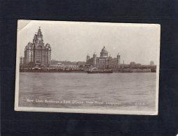 48790   Regno  Unito,  New  Liver  Building &  Dock  Offices  From  River,  Liverpool,  NV(scritta) - Liverpool
