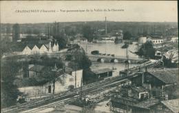 16 CHATEAUNEUF SUR CHARENTE / Vue Panoramique De La Vallée De La Charente / - Chateauneuf Sur Charente