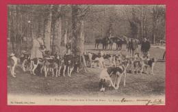 Une Chasse à Courre Dans La Forêt De Dreux  --  La Meute - Jacht
