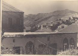 Liban - Lebanon - Photographie - Tahlé