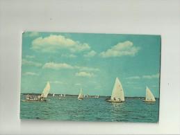 Sailboat Races Clear Lake - Etats-Unis