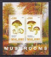 CBN47ND - Champignons Mushrooms - Bloc feuillet Neuf ** MNH  Non dentel� - M alawi 2010