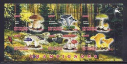 CBN54 - Champignons Mushrooms - Bloc feuillet Neuf ** MNH  - C ongo 2012