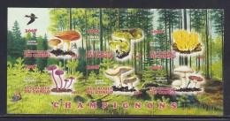 CBN30ND - Champignons Mushrooms - Bloc feuillet Neuf ** MNH Non dentel� - C ongo 2012