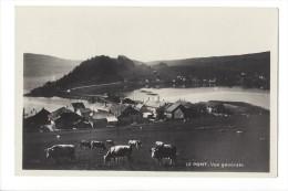 LVA1728 - Le Pont Vue Générale Vaches - VD Vaud