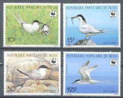 106 BENIN 1989 - Oiseau Le Sterne WWF (Yvert 669/72) Neuf ** (MNH) Sans Trace De Charniere - Bénin – Dahomey (1960-...)