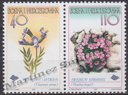 Bosnia Hercegovina - Bosnie 1997 Yvert 233-34, Flora, Flowers - MNH - Bosnia Herzegovina