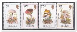 Belize 1986, Postfris MNH, Mushrooms - Belize (1973-...)