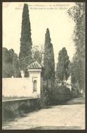 MARRAKECH Rare Allée Et Pavillon Dans Les Jardins De L´Aguadal Maroc Afrique - Marrakech