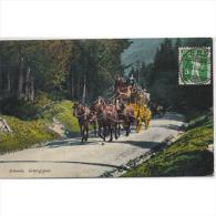SUZTP0936-LFTD1575TTSC.T Arjeta Postal SUIZA.HORGEN,Diligencia Por Entre Las Montañas Y Bosque SUIZO - Postales