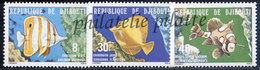 -Djibouti 488/90**Poissons - Dschibuti (1977-...)