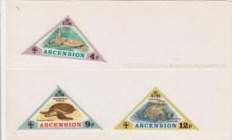 Ascension 170/172 ¨¨schidlpadden, Turtles, Turtoises - Ascension (Ile De L')