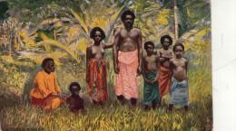 Isole  FIGI  ; FIJI - Figi