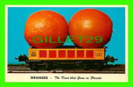 COMICS - HUMOUR - ORANGES, THE KIND THAT GROW IN FLORIDA - TRAIN - CURTEICHCOLOR - - Bandes Dessinées