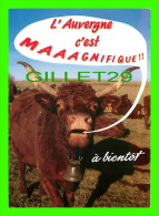 COMICS - HUMOUR - L'AUVERGNE C'EST MAGNIFIQUE !! À BIENTÔT - VACHE DE RACE SALERS - EDITIONS ARTISANALES - H. MONESTIER - Bandes Dessinées