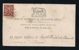 1872 - REGNO - 2 Cent. - CARTOLINA - con testo - da  ROMA a CASTELLINA in CHIANTI - SIENA - Tariffe Vaccinazione Animale