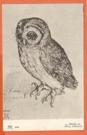 N14/621, Chouette, Ow, Eule , A. Dürer, 2298, Circulée  1907 - Vogels