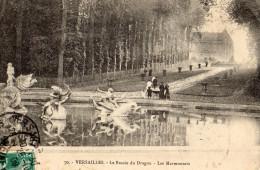 VERSAILLES - Le Bassin Du Dragon - Les Marmousets - Versailles (Château)