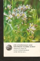 Old Soviet Collectibles Calendar Latvia Riga LSSR USSR 1984 Protected Plant Flora Flower  - Aster Tripolium L. - Calendars
